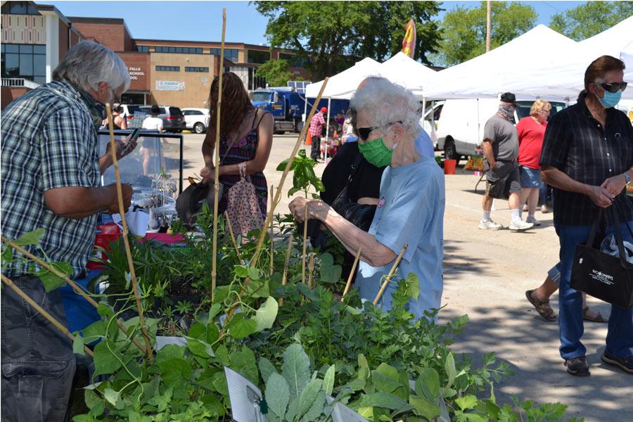 2020 Farmers Market Gillich's produce